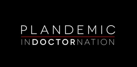plandemic-2-indoctornation.jpg