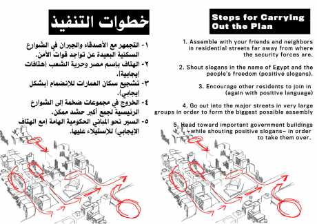 Steps for carrying out the plan - the Egyptian Activists' Action Plan -