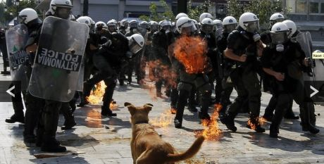The greek riot dog is still up at the front lines
