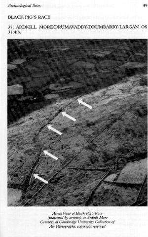 Cambridge University Air Photo of Dyke,  Ardkill More, Before Quarry.